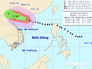 越南政府总理发布公函 指导《海鸥》台风应对工作
