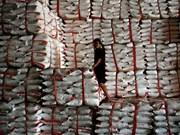 泰国食糖零售价格面临自由浮动的压力