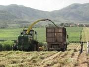 越南平定省44种代表性农村工业产品名单揭晓