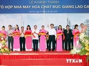 越南政府总理阮晋勇出席老街德江化工厂综合项目落成典礼