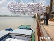 印度尼西亚将从越南进口20万吨大米