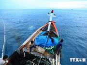 越南采取一切必要措施保护在东海传统渔场上作业的渔民