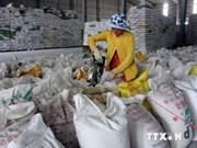 越南九龙江三角洲地区大米出口量超400万吨