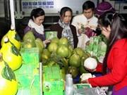 越南:2014年东北地区农业与贸易展销会拉开序幕