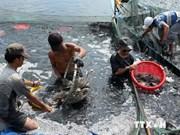 今年前9个月越南薄辽省水海产产量增长9%
