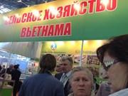 """""""2014年金色秋季""""展销会搭建俄越企业合作之桥"""