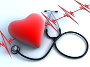 第14届全国心脏病学会议在岘港市拉开序幕