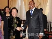 越南国家副主席阮氏缘会见联合国副秘书长