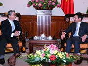 越日在越南进行第五次战略伙伴对话