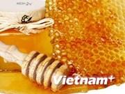 越南是世界五大蜂蜜出口国之一