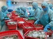 越南力争2020年实现水产品出口额创汇110亿美元目标