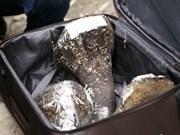 越南查获一起通过航空渠道非法贩运犀牛角案件