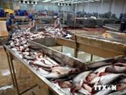 越南与俄罗斯进一步加强渔业领域合作