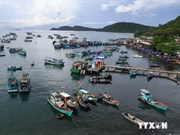 越南坚江省同泰国与柬埔寨各省促进农业与旅游合作