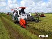 越南与爱尔兰签署农业合作备忘录