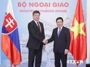 范平明副总理与斯洛伐克副总理进行会谈