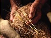 越南是澳大利亚谷物出口具有潜力的市场