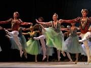 白俄罗斯著名艺术家为越南观众献上音乐盛宴