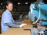 越南辅助工业面向欧洲市场