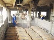 2014年越南水泥熟料出口总额有望达10亿美元