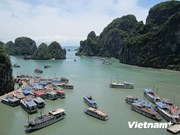 越南是最受西班牙游客青睐的旅游目的地