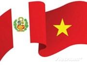 越南与秘鲁纪念建交20周年