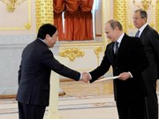 俄罗斯总统接受越南特命全权大使递交国书