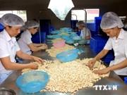 越南农产品深受日本消费者的青睐