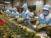 越南农产品企业进军新加坡市场潜力无穷