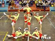 2014年亚洲健美操锦标赛:越南队夺得6金2银1铜