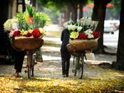 越南河内及岘港市跻身亚洲十大最具吸引力旅游目的地之列