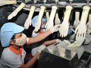 一家台湾公司在越南同奈省兴建医用手套生产厂