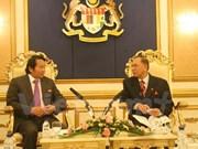 马来西亚国会希望同越南增进代表团互访