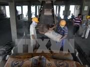 越南水泥行业提前一个月完成年销售量计划