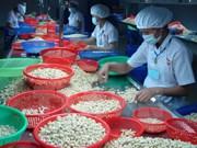 越南加大在国内市场腰果产品销售力度