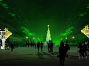 越南最大圣诞树亮相平阳省