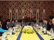 统一俄罗斯党代表团访问越南胡志明市