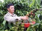 2014年出口额达逾10亿美元的十种农林水产品揭晓