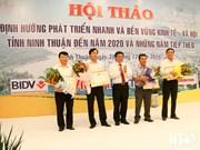 越南宁顺省应加大吸引投资商对风电投资