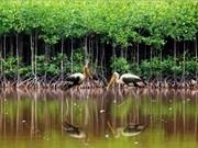 越南自然资源与环境部评选出2014年十大事件