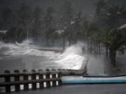 """热带风暴""""蔷薇""""侵袭菲律宾 遇难人数上升到35人"""