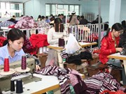 越南融入世界经济面临的机遇与挑战
