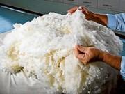 澳大利亚扩大对越南羊毛的出口