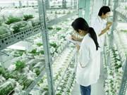 河内市农业产业走向生态农业