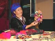 越南蒙族妇女努力保护传统手工艺