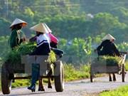 越南隆安省筹集近2.3亿美元用于新农村建设