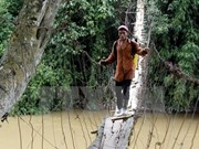 越南:呼吁全社会携手修建便民桥梁