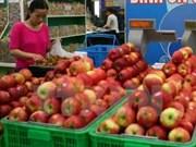越南食品安全局:尚未发现感染李斯特氏菌苹果产品