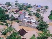 东盟与南亚区域合作协会分享应对自然灾害经验