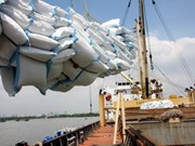 泰国举行促进大米生产的国际会议